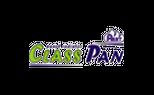 کلاس پن (Class Pan)